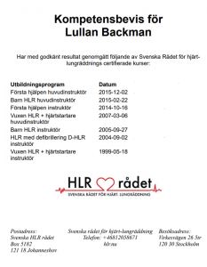 Kompetens intyg för Lullan Backman