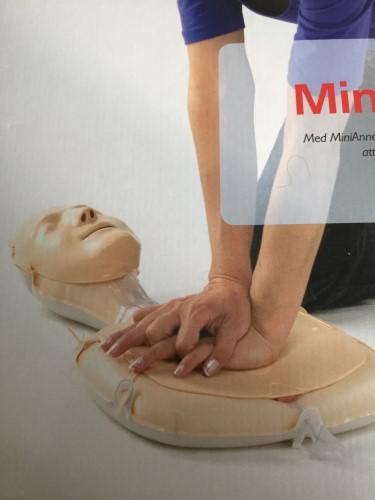 Mini- Anne